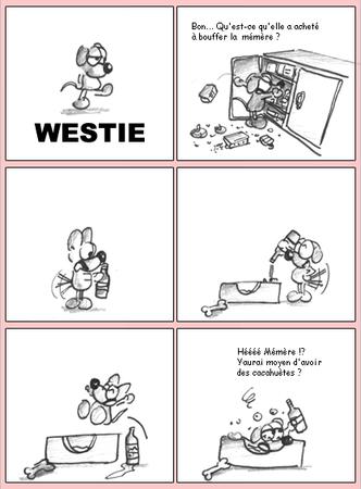 westie_pincessblog